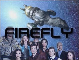 Firefly's Glow Banner